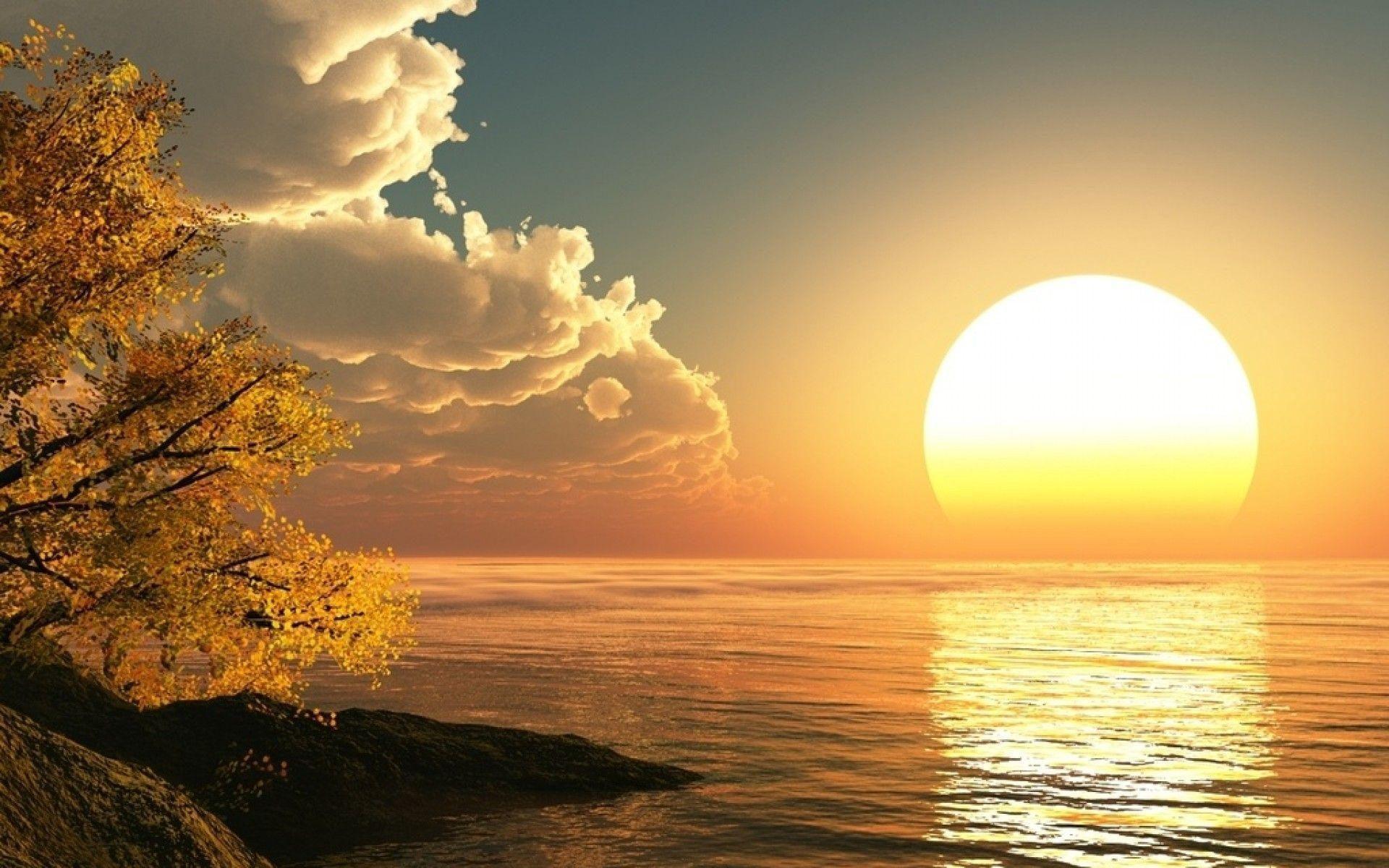 sun health